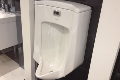 Bardon Urinal