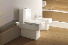 Vero One-Piece toilet